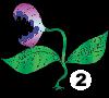 NR_viidakkoansa2