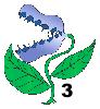 NR_viidakkoansa3