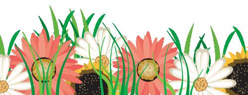 Kukkia, alareuna